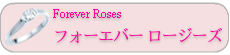 Forever Roses フォーエバー ロージーズ